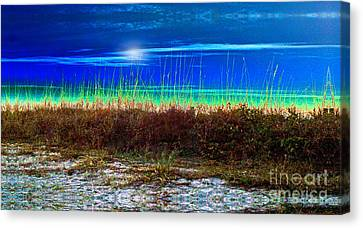 Solar Sky Canvas Print by Laurel D Rund