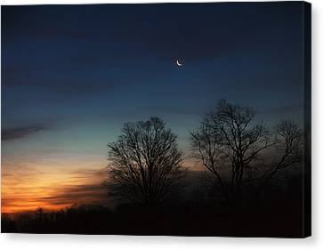Solstice Moon Canvas Print by Bill Wakeley