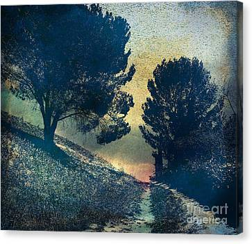Somber Passage Canvas Print by Bedros Awak
