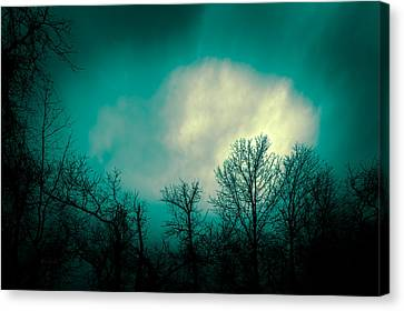 Somewhere Between Here And There Canvas Print by Bob Orsillo