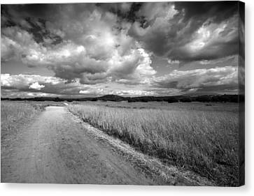 Somewhere Down The Road Canvas Print by Peter Tellone