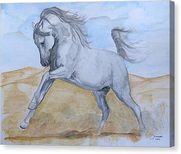 Son Of The Desert Canvas Print by Janina  Suuronen