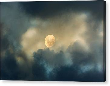 Song To The Moon Canvas Print by Georgiana Romanovna