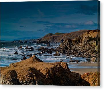 Sonoma Coast Canvas Print by Bill Gallagher