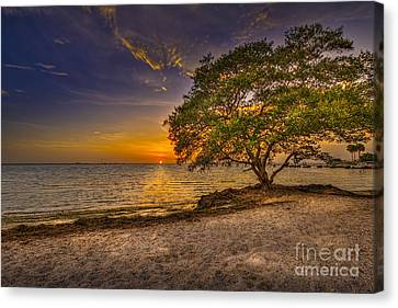 Soothing Light Canvas Print by Marvin Spates