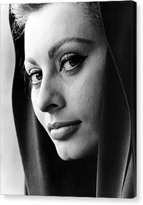 Sophia Loren Canvas Print by Studio Release