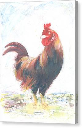 Sophronie Canvas Print by Jovica Kostic