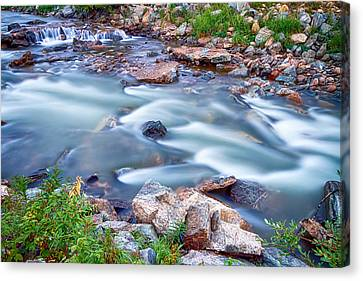 South Boulder Creek Little Waterfalls Rollinsville Canvas Print by James BO  Insogna