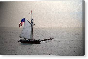 South Haven Sailing Canvas Print by Penny Hunt