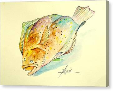 Southern Flounder  Canvas Print by Yusniel Santos