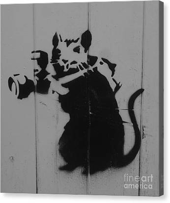Southport Mouse Canvas Print by C Lythgo