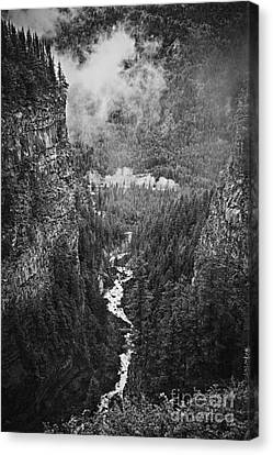 Spahats Creek Canyon In Wells Gray Provincial Park Canvas Print by Elena Elisseeva