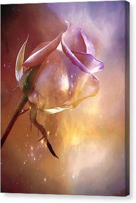 Sparkling Rose Canvas Print by Anne Macdonald