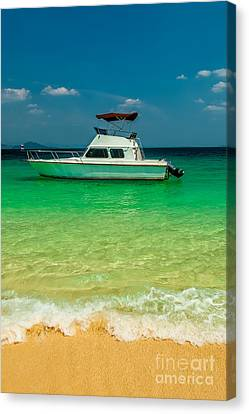 Speed Boat Canvas Print by Adrian Evans