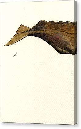 Sperm Whale Third Part Canvas Print by Juan  Bosco