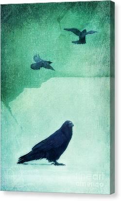 Spirit Bird Canvas Print by Priska Wettstein