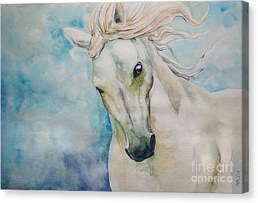 Spirit Canvas Print by Tamer and Cindy Elsharouni