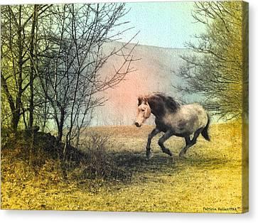 Spiritus Equus Canvas Print by Patricia Keller