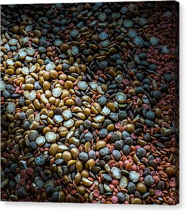 Split Pea Abstract Canvas Print by Bob Orsillo