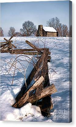 Split Rail And Nation Canvas Print by Olivier Le Queinec