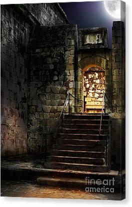 Spooky Backlit Door Way In Moon Light Canvas Print by Oleksiy Maksymenko