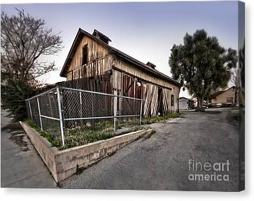 Spooky Chino Barn Canvas Print by Gregory Dyer