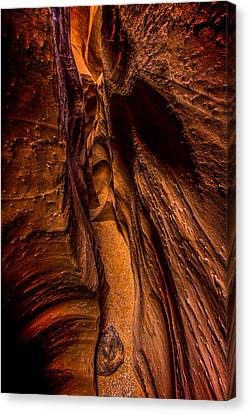 Spooky Colors Canvas Print by Chad Dutson