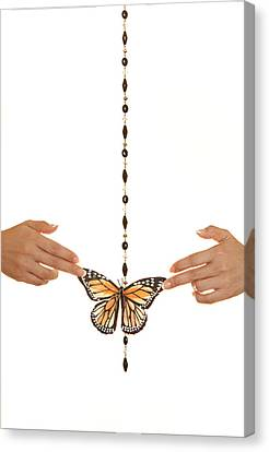 Spread Your Butterfly Wings Canvas Print by Dario Infini