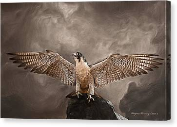 Spread Your Wings Canvas Print by Wayne Bonney