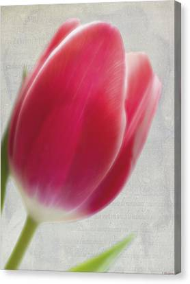 Spring Art - Dreaming Of Spring Canvas Print by Jordan Blackstone