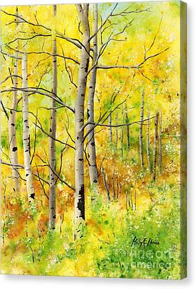 Spring Aspens Canvas Print by Hailey E Herrera