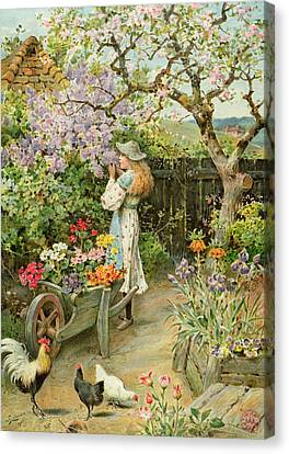 Spring Blossoms Canvas Print by William Stephen Coleman