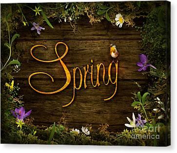 Spring Design - Flower Wreath Canvas Print by Mythja  Photography