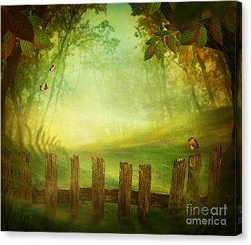 Spring Design - Forest With Wood Fence Canvas Print by Mythja  Photography