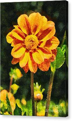 Spring Flower Canvas Print by George Atsametakis