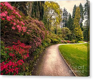 Spring Footpath Canvas Print by Adrian Evans