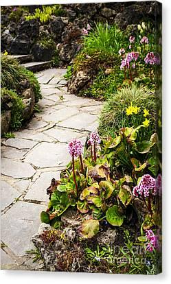 Spring Garden Canvas Print by Elena Elisseeva
