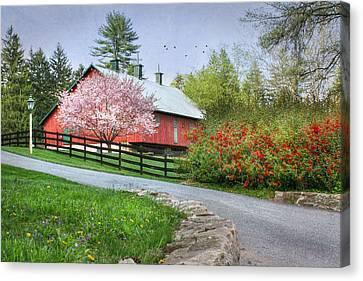 Spring In Clarks Valley Canvas Print by Lori Deiter