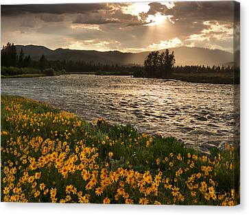 Spring In Harriman State Park Canvas Print by Leland D Howard