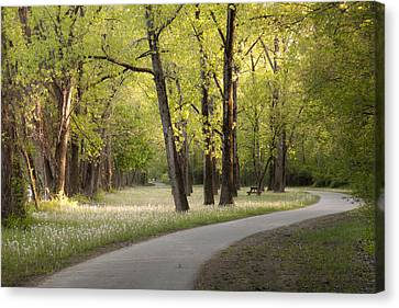 Spring Morning At Mohawk-hudson Bike-hike Trail Canvas Print by Jiayin Ma
