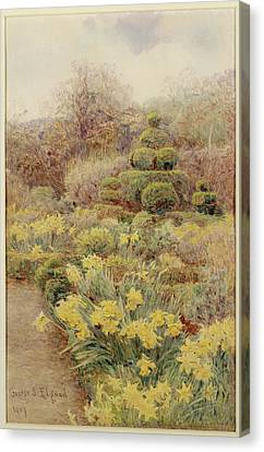 Spring   Raunds Cliffe Canvas Print by George Samuel Elgood