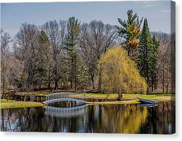 Spring Reflections Canvas Print by Paul Freidlund