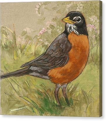 Spring Robin 1 Canvas Print by Tracie Thompson