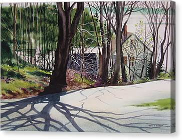 Spring Shadows Canvas Print by Karol Wyckoff