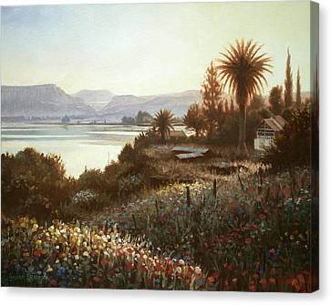 Spring Sunset  Northern Galilee Canvas Print by Graham Braddock