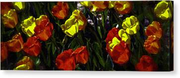 Spring Sunshine Canvas Print by F Leblanc