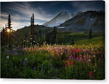 Spring Time At Mt. Rainier Washington Canvas Print by Larry Marshall