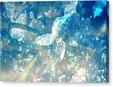 Springled With Du Canvas Print by Sherri  Of Palm Springs