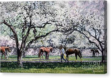 Springtime At Keeneland Canvas Print by Thomas Allen Pauly