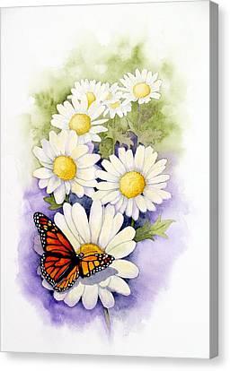 Springtime Daisies  Canvas Print by Brett Winn